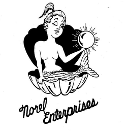 mark for NOREL ENTERPRISES, trademark #73788826