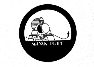 mark for MAYAN PRIDE, trademark #73801819