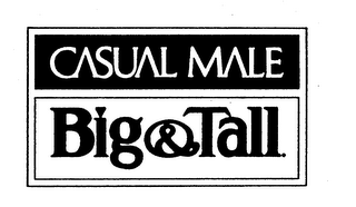 mark for CASUAL MALE BIG & TALL, trademark #75039289