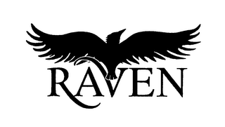 mark for RAVEN, trademark #75066642