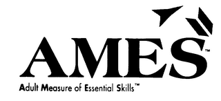 mark for AMES ADULT MEASURE OF ESSENTIAL SKILLS, trademark #75256013