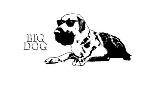 mark for BIG DOG, trademark #75625249