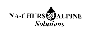mark for NA-CHURS ALPINE SOLUTIONS, trademark #76072872