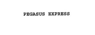 mark for PEGASUS EXPRESS, trademark #76176289