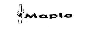 mark for MAPLE, trademark #76177868