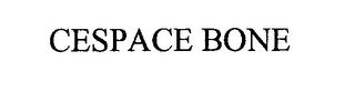mark for CESPACE BONE, trademark #76269691