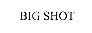 mark for BIG SHOT, trademark #76298016