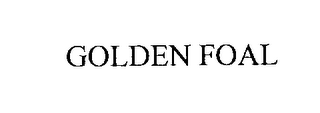 mark for GOLDEN FOAL, trademark #76305466