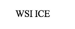 mark for WSI ICE, trademark #76318552