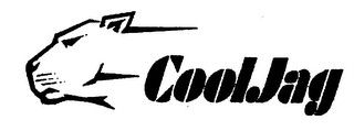 mark for COOLJAG, trademark #76335275