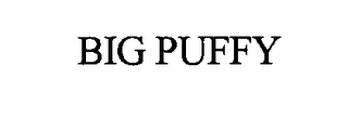 mark for BIG PUFFY, trademark #76389346