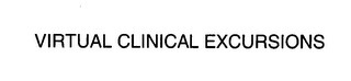 mark for VIRTUAL CLINICAL EXCURSIONS, trademark #76410165