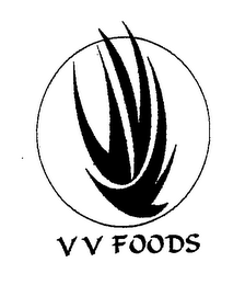 mark for V V FOODS, trademark #76484883