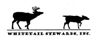 mark for WHITETAIL STEWARDS, INC., trademark #76575434