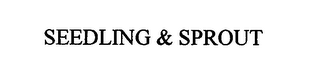 mark for SEEDLING & SPROUT, trademark #76616671