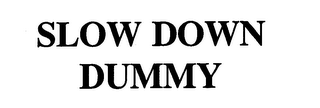 mark for SLOW DOWN DUMMY, trademark #76697528