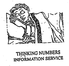 mark for THINKING NUMBERS INFORMATION SERVICE, trademark #76713362