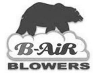 mark for B-AIR BLOWERS, trademark #77005622