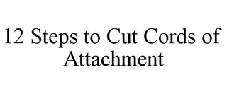 mark for 12 STEPS TO CUT CORDS OF ATTACHMENT, trademark #77023690