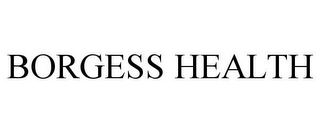 mark for BORGESS HEALTH, trademark #77032528