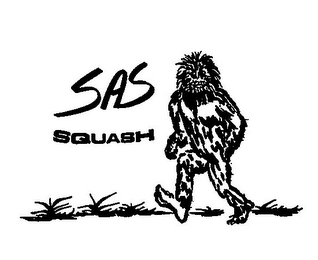 mark for SAS SQUASH, trademark #77102359