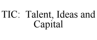 mark for TIC: TALENT, IDEAS AND CAPITAL, trademark #77123959