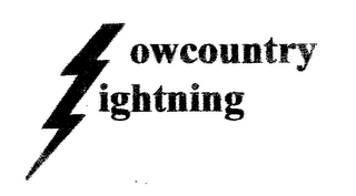 mark for LOWCOUNTRY LIGHTNING, trademark #77145369