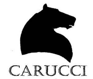 mark for CARUCCI, trademark #77173496