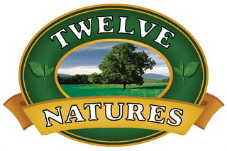 mark for TWELVE NATURES, trademark #77176077