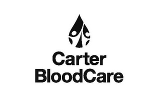 mark for CARTER BLOODCARE, trademark #77199473