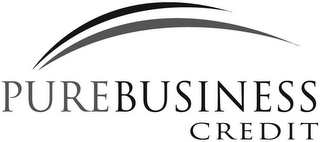 mark for PUREBUSINESS CREDIT, trademark #77220153