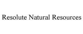 mark for RESOLUTE NATURAL RESOURCES, trademark #77274721