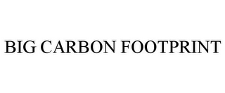 mark for BIG CARBON FOOTPRINT, trademark #77300809