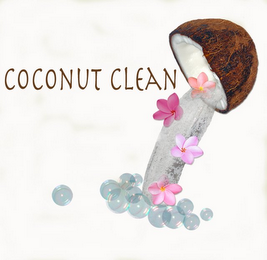mark for COCONUT CLEAN, trademark #77315373