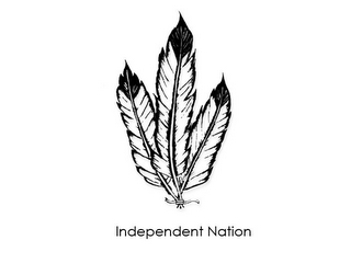 mark for INDEPENDENT NATION, trademark #77514179