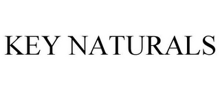 mark for KEY NATURALS, trademark #77804826