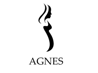 mark for AGNES, trademark #77833633