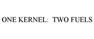 mark for ONE KERNEL: TWO FUELS, trademark #77881936