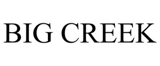 mark for BIG CREEK, trademark #77921818