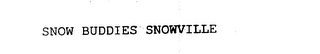 mark for SNOW BUDDIES SNOWVILLE, trademark #78013941