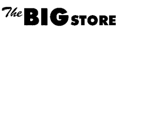 mark for THE BIG STORE, trademark #78245310