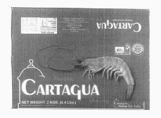 mark for CARTAGUA, trademark #78294042