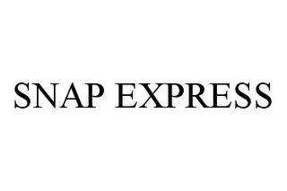 mark for SNAP EXPRESS, trademark #78324189