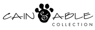 mark for CAIN & ABLE COLLECTION, trademark #78368930