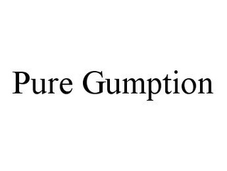 mark for PURE GUMPTION, trademark #78383871