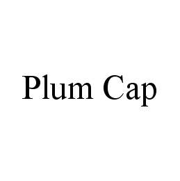 mark for PLUM CAP, trademark #78422466