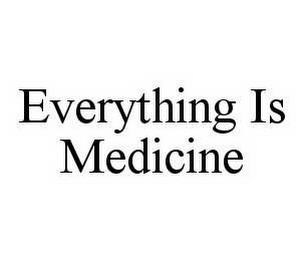 mark for EVERYTHING IS MEDICINE, trademark #78513256