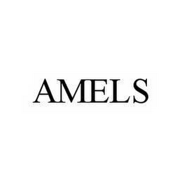 mark for AMELS, trademark #78515638