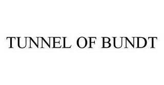 mark for TUNNEL OF BUNDT, trademark #78517889
