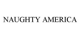 mark for NAUGHTY AMERICA, trademark #78529649